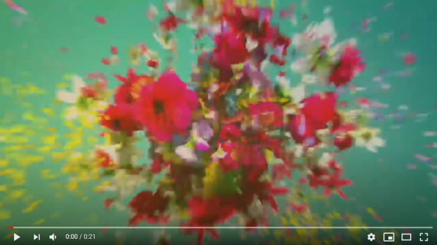 https://capeclogs.com/wp-content/uploads/2020/05/Smell-the-Flowers-628x353.png